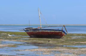 Reef Raider Boat